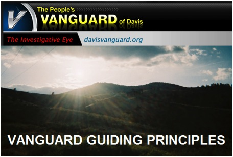 an image of vanguard guiding principles graphic